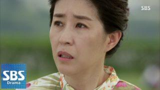 韓流俳優:キム・ミギョン(김미경)とは?